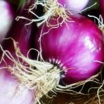 Usos de la Cebolla en la Belleza