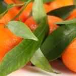 Uso de las Mandarinas en el Hogar
