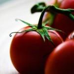 Usos del Tomate en la Belleza