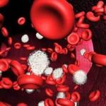 Potenciar el Hierro en la Sangre