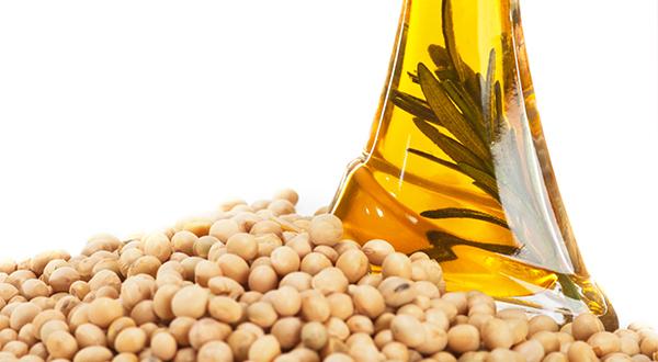Este aceite, que se obtiene del prensado de las semillas de la soja, tiene un sabor tan neutro que puede utilizarse en cualquier receta. ¿Sabías que una sola cucharada asegura la dosis de ácidos grasos esenciales que necesitamos a diario?