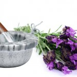 Remedios para acelerar la curación de la otitis